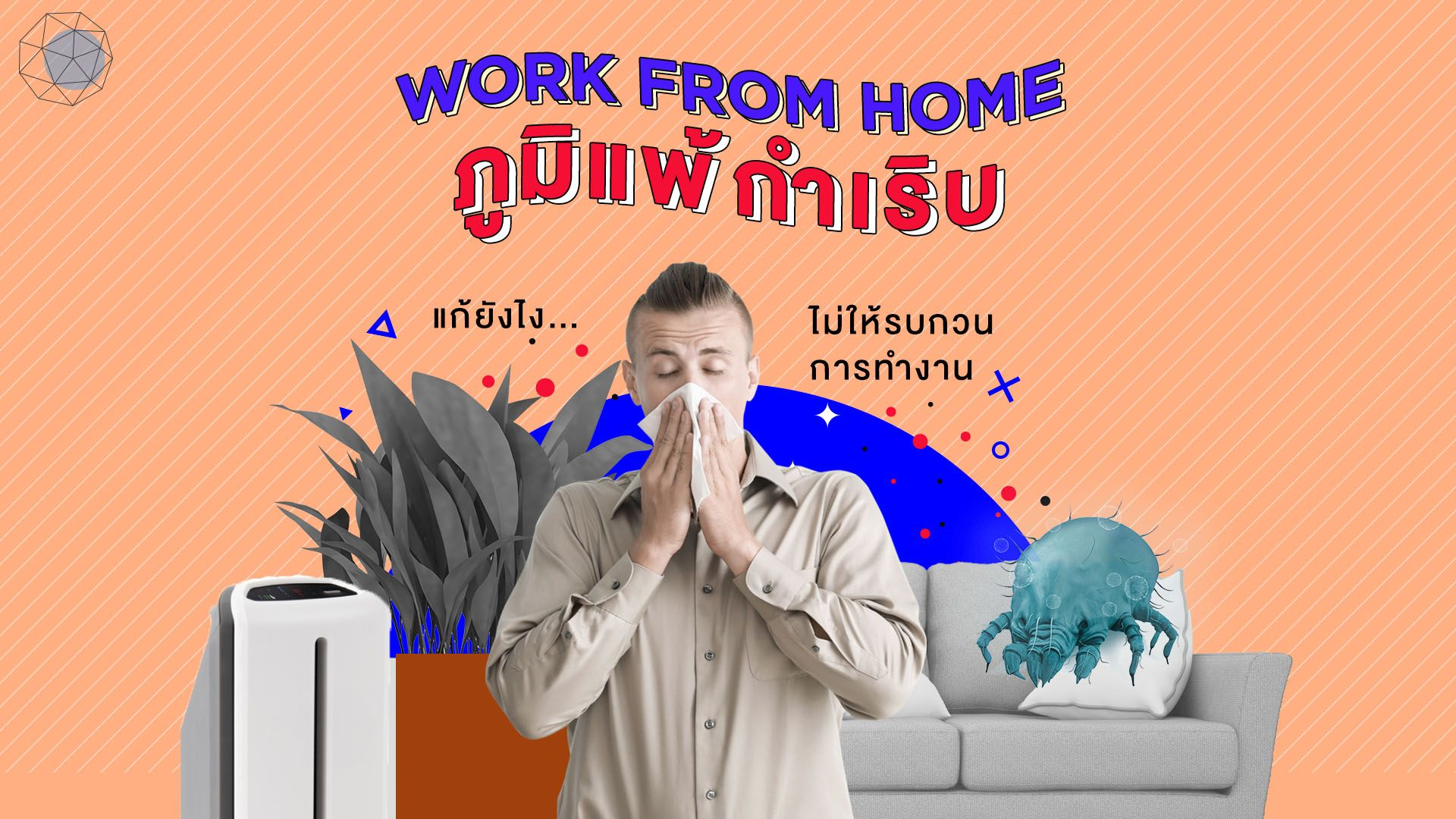 Work From Home ภูมิแพ้กำเริบ