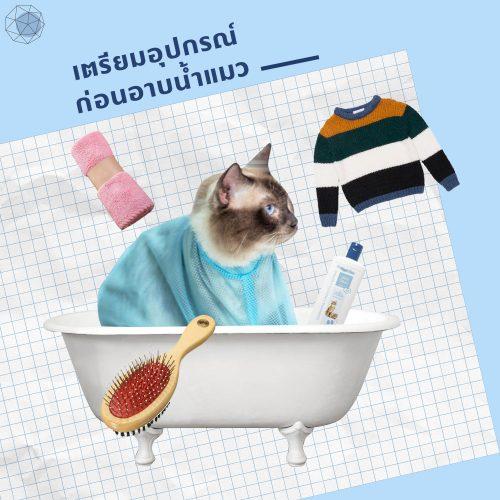 อุปกรณ์อาบน้ำแมว