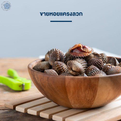 ธุรกิจเล็กๆ: ขายหอยแครงลวก